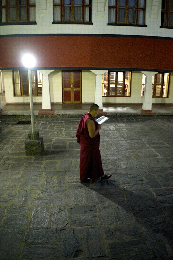 Nun walking in courtyard reading Buddhist text