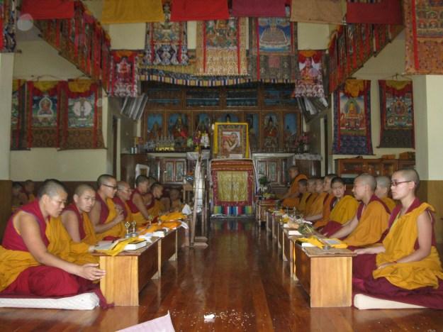 Tibetan Buddhist nuns praying Sagadawa 2014