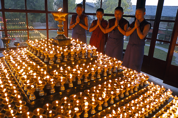 Buddhist nuns saying prayers, Tibetan butter lamps, order pujas, pujas