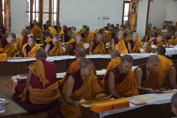 Buddhist nuns reading Buddha's words