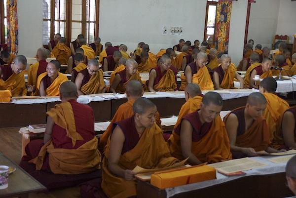 Buddhist nuns reading Buddha's words
