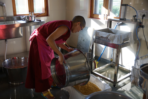Tibetan Buddhist nun making tofu