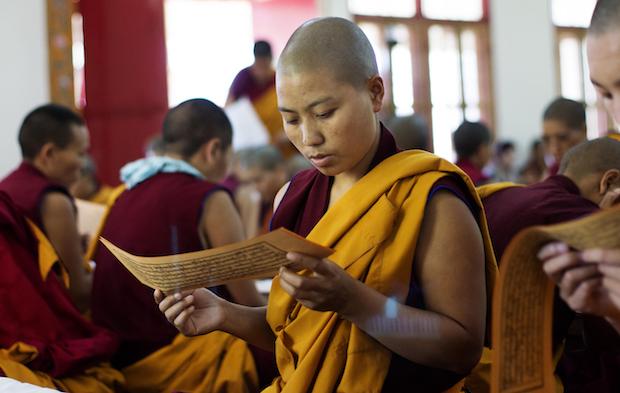 Tibetan nun, Buddhist nun, Tibetan Nuns Project, nun reading scripture, Tibetan Buddhism, Saga Dawa, Dolma Ling Nunnery