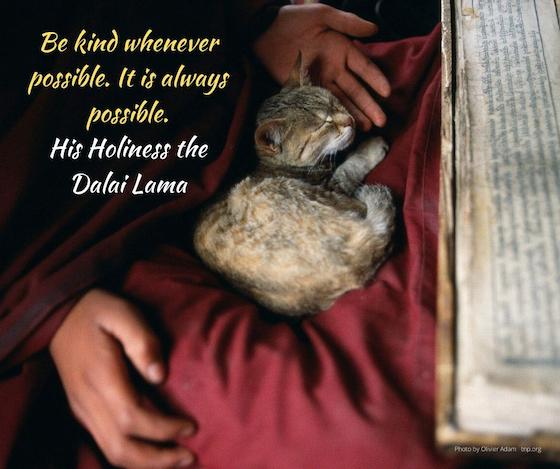 be kind whenever possible, Dalai Lama, Dalai Lama quote, inspirational quote