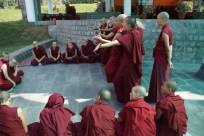 Nuns from 8 nunneries in India and Nepal took part.