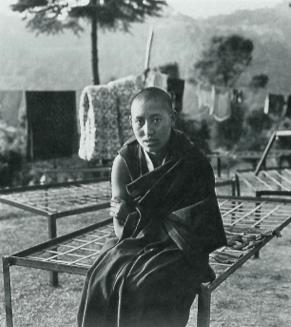 Delek Palmo, refugee nuns, Tibetan Nuns Project, escape from Tibet