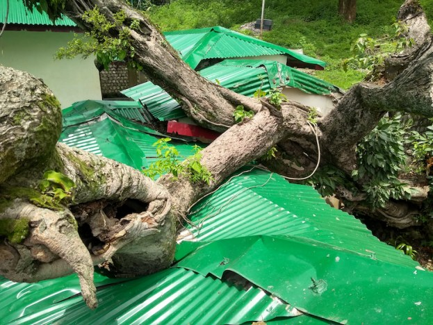 Roof at Shugsep Nunnery and Institute crushed by a tree