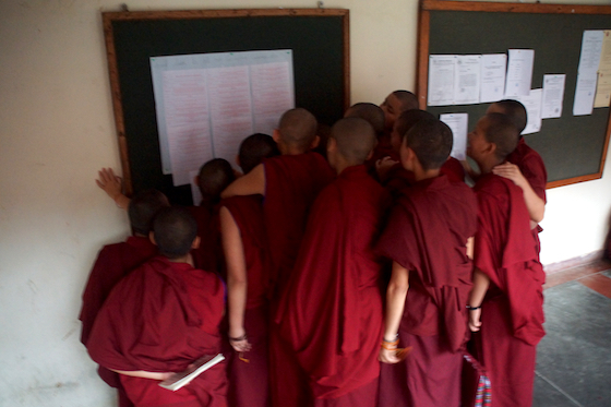 good luck messages for the Geshema candidates, good luck messages to nuns, Geshema, Geshema exams, Tibetan Buddhist nun, Tibetan Buddhism, Tibetan Nuns Project