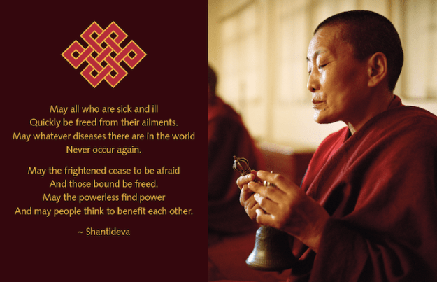 Shantideva quote and spring 2020 message from Tibetan Nuns Project