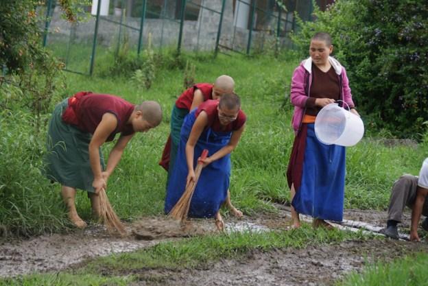 Dolma Ling Nunnery, Tibetan nuns, Tibetan Nuns Project, Septic Repair Dolma Ling