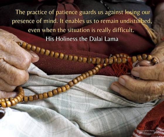 inspirational quote, Dalai Lama, patience, The practice of patience guards us against losing our presence of mind. It enables us to remain undisturbed, even when the situation is really difficult