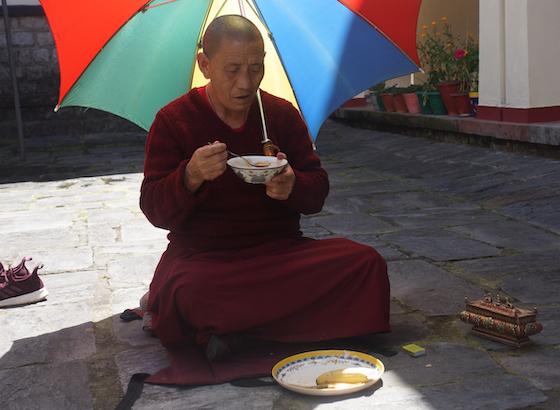 Tibetan Buddhist nun social distancing Covid-19