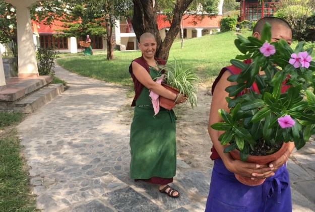 Tibetan Nuns Project, Tibetan Buddhist nuns, Buddhist nuns, Dolma Ling Nunnery