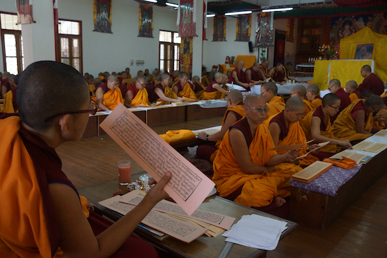 Tibetan Buddhist nuns at Dolma Ling reading the words of the Buddha