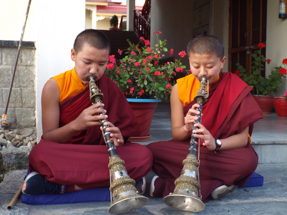 Tibetan Buddhist nuns playing a Tibetan musical instrument called the gyaling