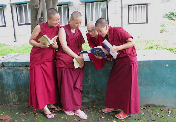 Tibetan Buddhist nuns studying at the Sakya College for Nuns