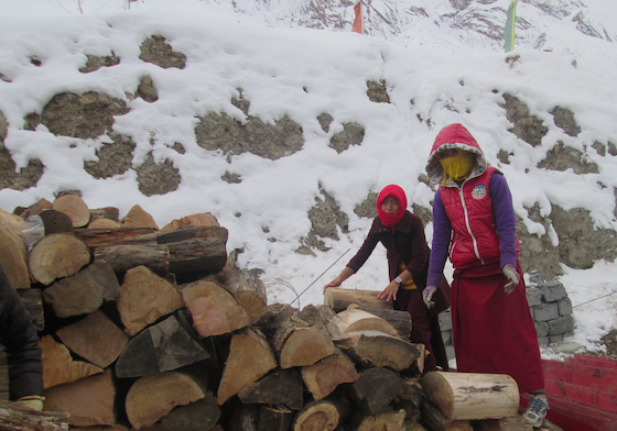 firewood for winter at Sherab Choeling Nunnery