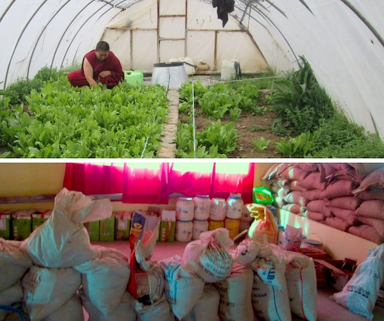 greenhouse and supplies at Sherab Choeling Nunnery 2019