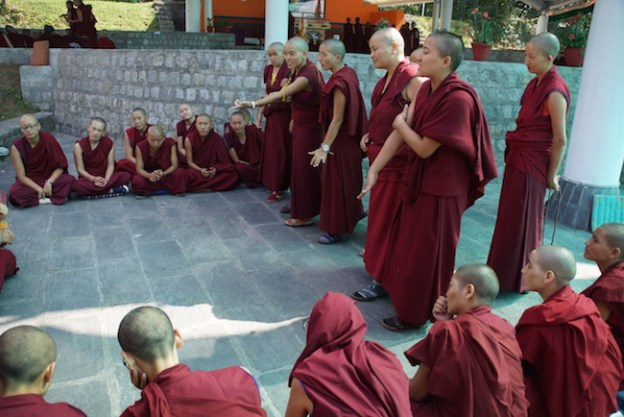 Tibetan Nuns Project, inter-nunnery debate, Jang Gonchoe, Buddhist education, Tibetan nuns, Buddhist nuns, Tibetan debate, nunnery