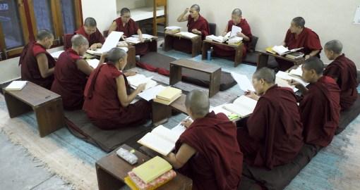 Tibetan Nuns, Tibetan Nuns Project, Education Tibetan Buddhist nuns, Tibetan education, Tibetan culture, what Tibetan Buddhist nuns learn