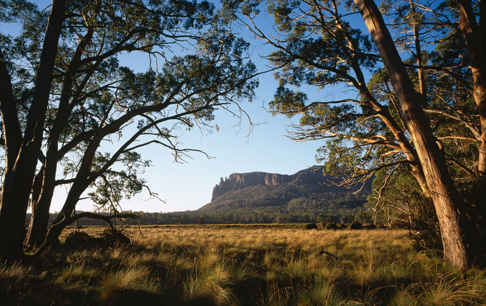 The Pelion Plains in the Cradle Mountain-Lake St Clair National Park. Part of the iconic Overland Track. Photo: Grant Dixon