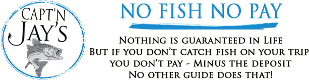 jay no fish no pay