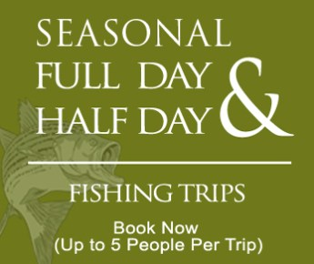 Jay's Fishing Guide Trips - Full and Half Day Seasonal Fishing Trip Experience - We fillet your fish you catch - Lakes Cherokee and Norris in Tennessee