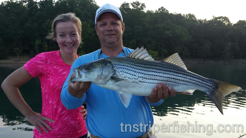 Capt'n Jay Fishing Tour Guide Norris Lake Tennessee