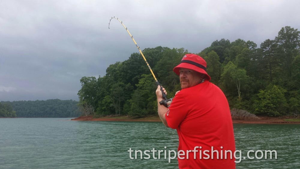 Boating Tours Captain Jay Tennessee Lakes