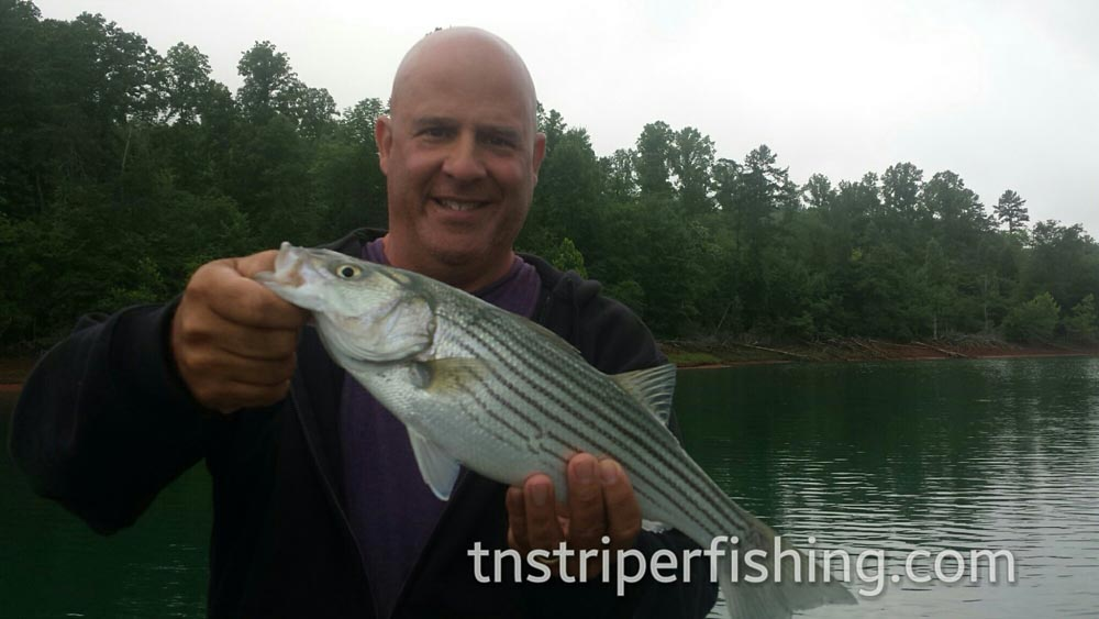 Full Day Fishing Trips Charter Aquatic Boats Tennessee