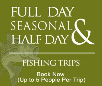 Jay's Fishing Guide Trips - Seasonal Full and Half Day Fishing Trips