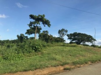 tobago land for sale by owner