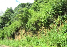 land for sale cascade port of spain cheap