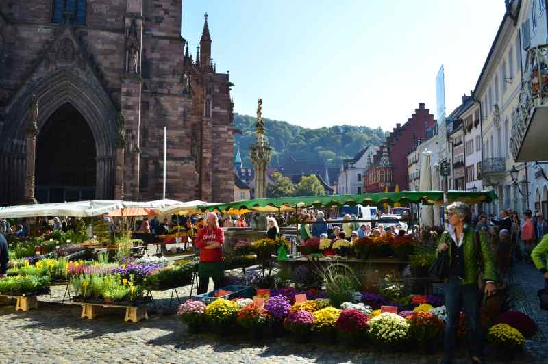 Freiburg Market in front of the Munster