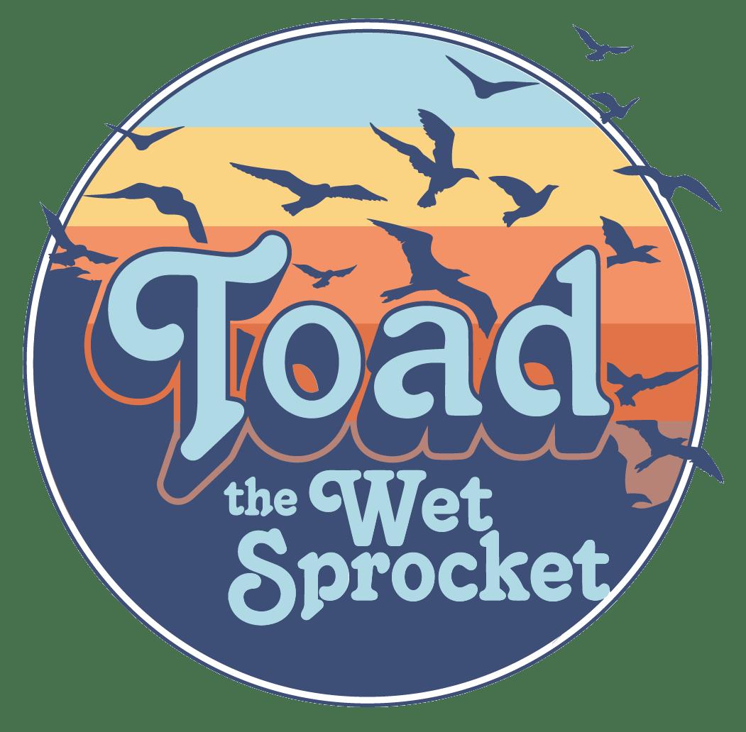 Image result for toad the wet sprocket logo