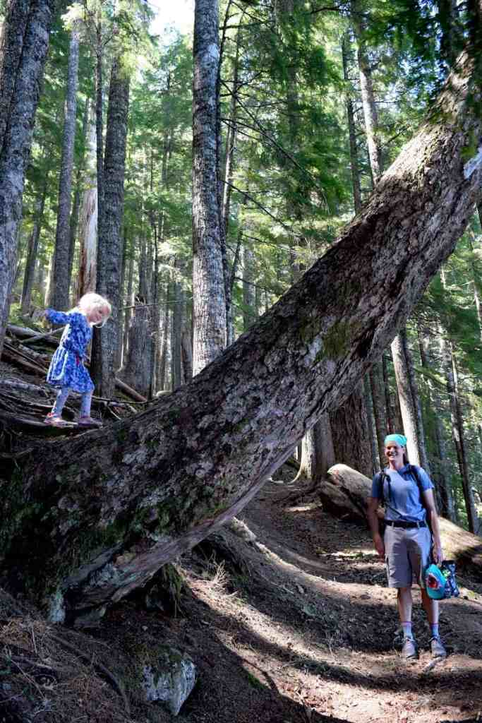 Planning the perfect day on Oregon's Lost Lake with kids