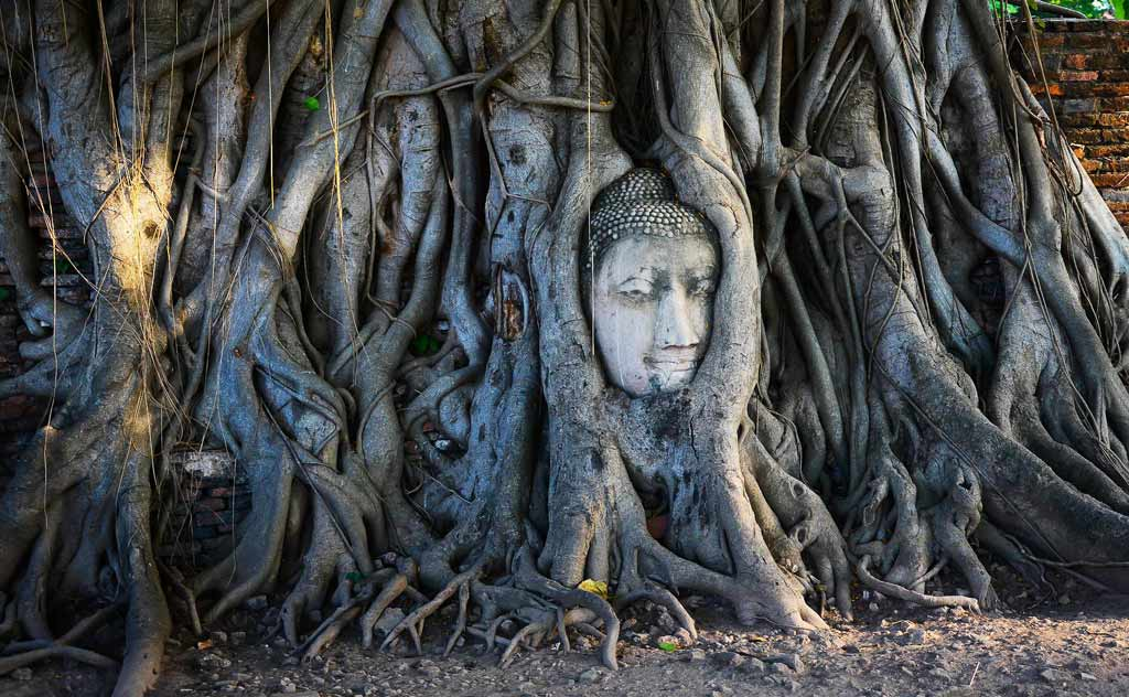 Ayutthaya Temples: Wat Mahathat - Famous Buddha Head embedded in tree