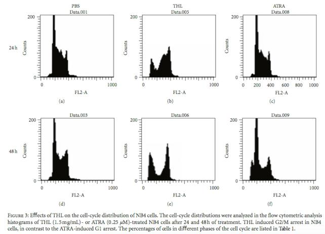 Efek TXL pada distribusi sel nb4