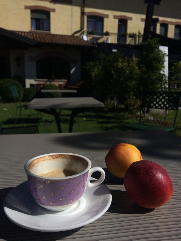 Drinking coffee and fresh fruit in the garden.