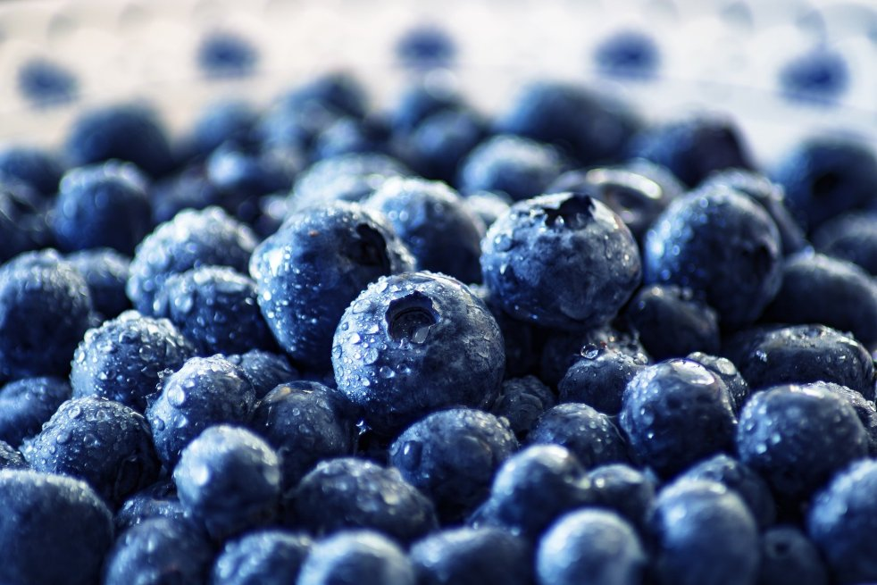 The brain diet, brain superfood to boost your kid's memory.
