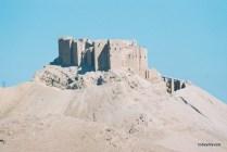Palmyra View towards tombs