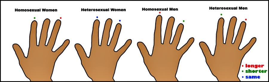 homohands