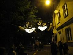 Dzieci nazwały to całujące kolibry