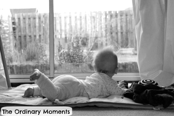 Looking - The Ordinary Moments