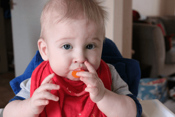 Weaning eating clementine