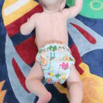 Review: Freeva cloth nappy