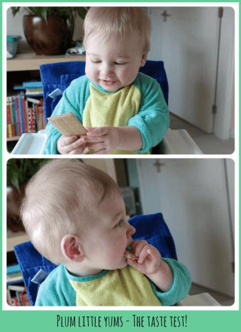 Plum Little Yums taste test