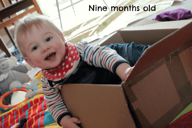 nine months old in a box