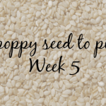 From poppy seed to pumpkin: 5 weeks pregnant