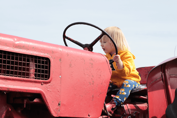 Toby on the tractor